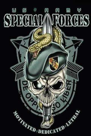 Todas las capturas disponibles para USA army special forces skull